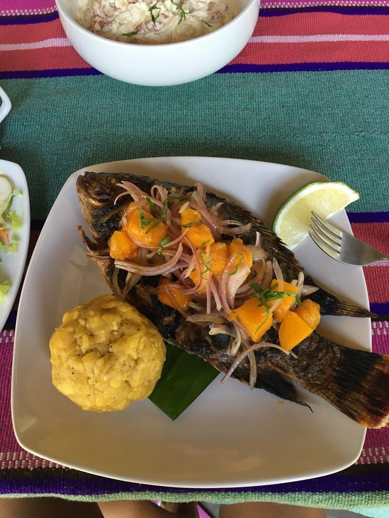plato de la selva peruana